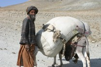 Man with his donkey Afghanistan