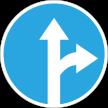 Düz gidebilirsiniz sağa dönebilirsiniz, sola dönemezsiniz