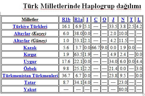 türk haplo