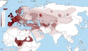 R1b haplogrubu