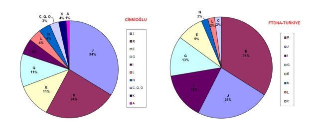 TÜRKİYE, Y-DNA dağılımları