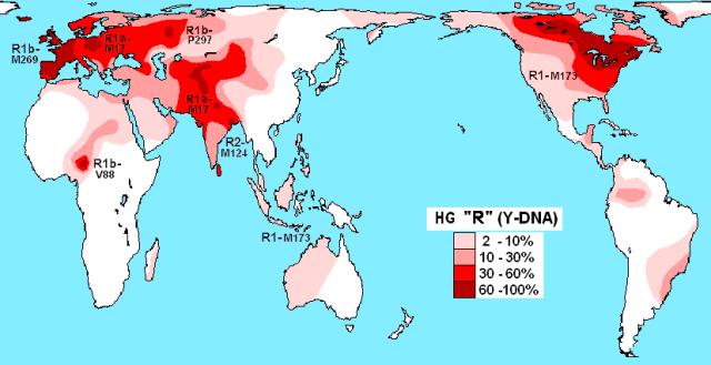 Haplogrup R (Y-DNA)