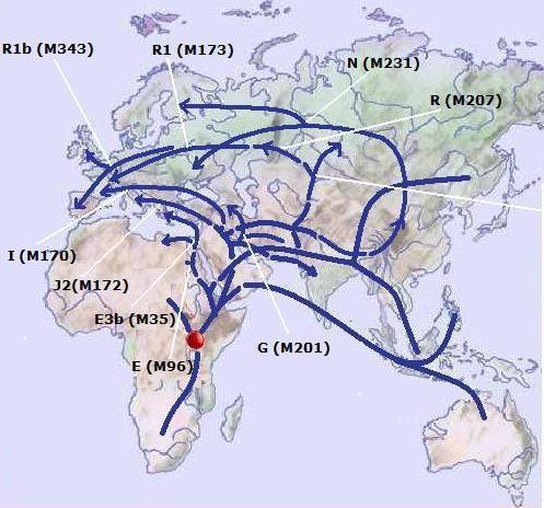 Y-Map5